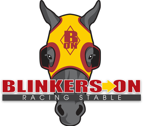 Blinkers on Horse Racing Partnerships